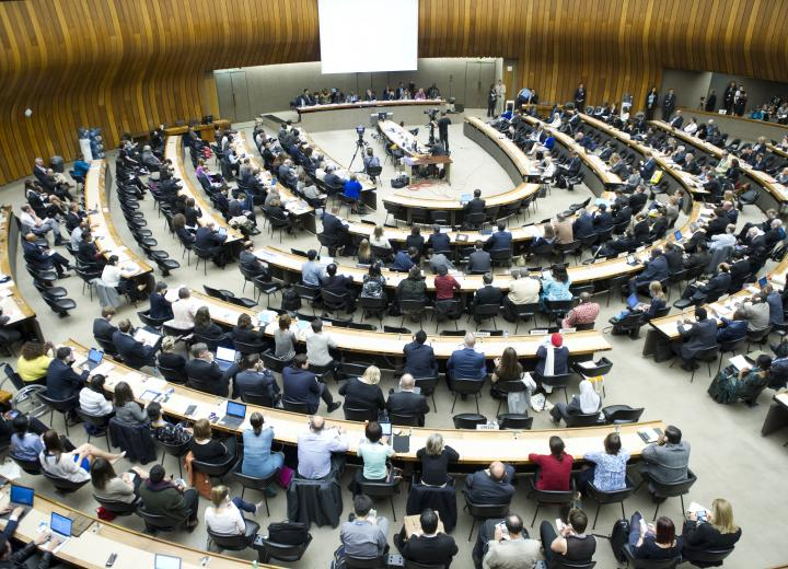 BREAKING NEWS: Governments Adopt a Global Resolution on Rheumatic Fever and Rheumatic Heart Disease at the World Health Assembly